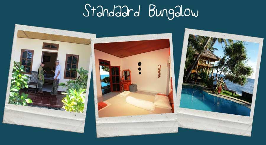 Luxe-Bungalow-Accommodatie
